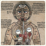 Spice trail | what is ayurveda?